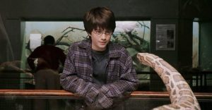 Harry Potter nói chuyện với rắn