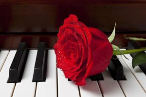 khóa học piano tỏ tình