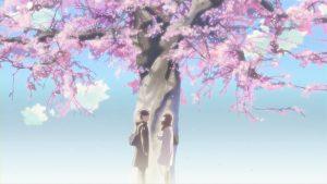Toono Takaki và Akari dưới gốc cây anh đào