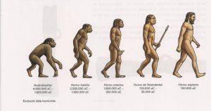 Spiens là gì? Và sự phát triển của loài người homo spiens